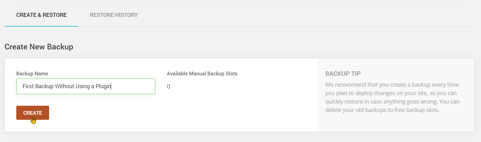 How to Create a WordPress Instant Backup Through Your Web Host Step 4